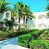 Cédriana Hotel; palm